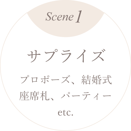 scene1 サプライズ